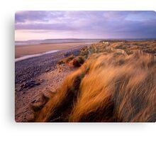 Sand Dunes at Westward Ho!, Devon Metal Print