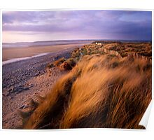 Sand Dunes at Westward Ho!, Devon Poster