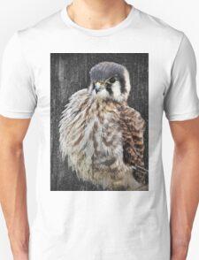 Portrait of a Kestral Unisex T-Shirt