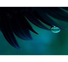 Bubble Blue Photographic Print
