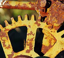 YELLOW SMALL HORSE DRAWN PLOW COG.  by Helen Akerstrom Photography
