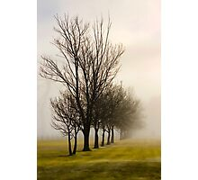 Maryvale Mist Photographic Print
