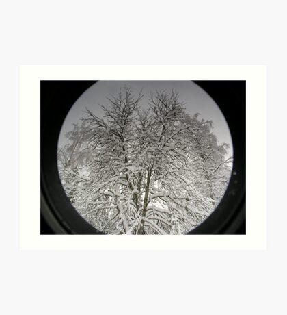 Icey Tree Art Print