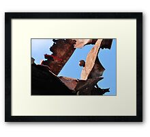 Protective sculpture Framed Print