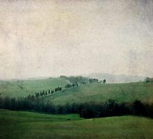 Toscana Vintage IV by Lena Weiss