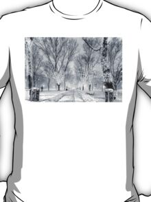Snow's path down Comm Ave T-Shirt