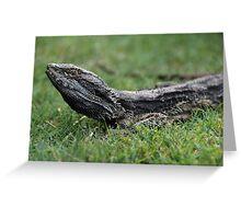 Lizard on Grass Greeting Card