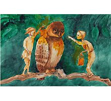 elves and owl Photographic Print