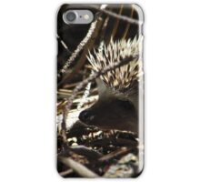 Grumpy Quills iPhone Case/Skin