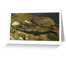 Gator n FLower Greeting Card