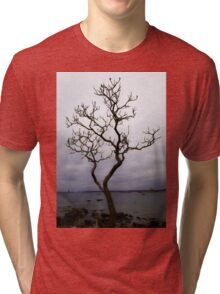 Reaching Tree Tri-blend T-Shirt