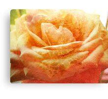 Painting Cream Rose. Canvas Print