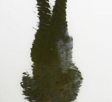 sandy reflection Sticker
