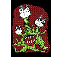 Kitty Monster Photographic Print