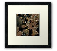 Flowerz Framed Print