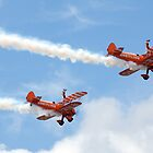 Breitling Wingwalkers by Colin Hollywood Photography