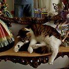 Feliex sleepes evreywhere by Edgar023
