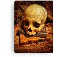 The Book Keeper Canvas Print