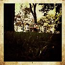 in the park ... by negz