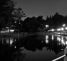 Canal at Night by Adam Pap