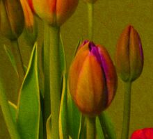 Tulips Against Green Sticker