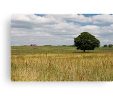 One lonely Tree  (Magpie Mine,s Derbyshire) Canvas Print
