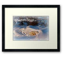 Peace & Goodwill from Yoga Bear Framed Print