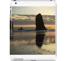 Oregon Coast iPad Case/Skin