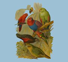 Parrots. [after rudolph becker] Unisex T-Shirt