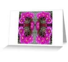 Butterfly of Circled Cactus Greeting Card