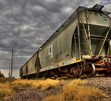 The Next Train by Sue  Cullumber