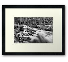 Roosevelt National Forest Stream in Black and White Framed Print
