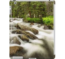 Roosevelt National Forest Stream iPad Case/Skin