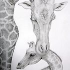 Black White and Grey by Lorraine  Stern