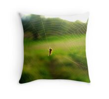 .. climbed up the waterspout. Throw Pillow