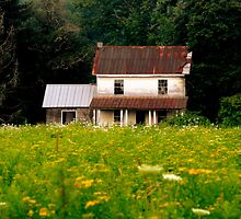 Farmhouse by Sharksladie