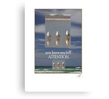 North Shore Gulls Canvas Print