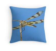 Halloween Pennant Dragonfly against the blue sky part 2.  Throw Pillow