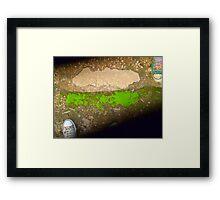 moss. Framed Print