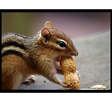 Just Can't Wrap my Mouth Around it?! Photographic Print