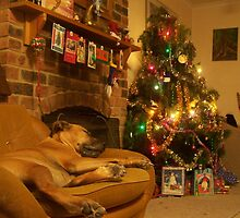 Christmas by ericafaery