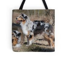 Australian Shepherd Montage Tote Bag