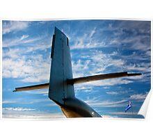 Caribou Sky Poster