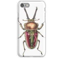 Rainbow Stag Beetle iPhone Case/Skin