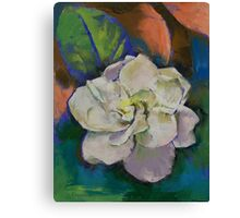 Gardenia Flower Canvas Print