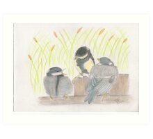 """""""chatter! chirp! chirp""""   for JD Art Print"""