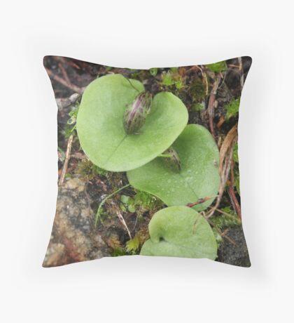 Emerging Helmet Orchids Throw Pillow