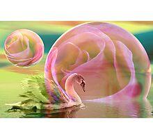Sending you a dream Photographic Print