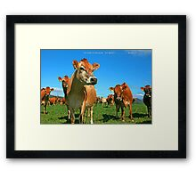 To Err is Human to Moo.........Bovine! Framed Print