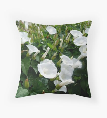 Bindweed. Throw Pillow